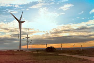 Wind Park near Villeveyrac, south of France