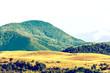 Retro Photo Of Carpathian Mountains Landscape In Summer