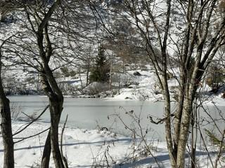 Lac gele'