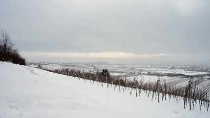 Winter at Constance