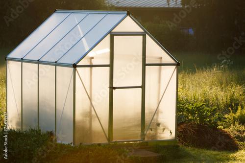 Small greenhouse in backyard - 75691517