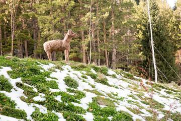 Ski resort Forest Tale near town of Almaty, Kazakhstan