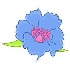blue flower isolated illustration
