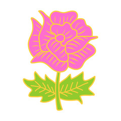 pink flower isolated illustration