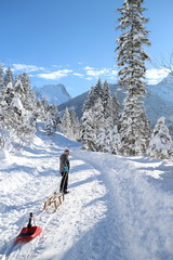 Schlittenfahren in Winterlandschaft