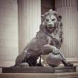 Leinwanddruck Bild - Lion