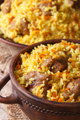 Asian fried rice with meat close-up. vertical