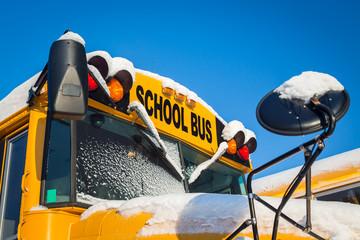Winter School Buses