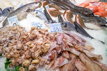 Fish and seafood at the Boqueria market in Barcelona