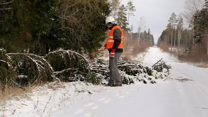 Lumberjack in the forest near tree in winter on road