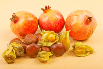 Pomegranate, physalis and chestnuts isolated on a beige backgrou