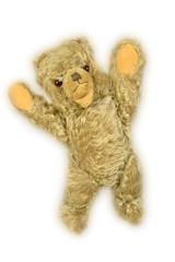 Teddy, h.