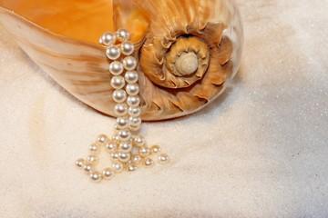 Muschel und Perlen im kristall Sand