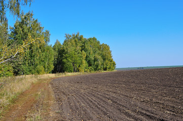 Autumn landscape with plowed field