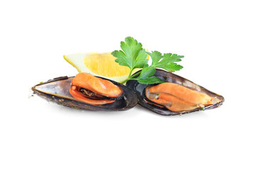 boiled mussels isolated on white background