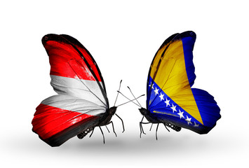 Two butterflies with flags Austria and Bosnia and Herzegovina