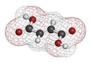 Fumaric acid molecule. Found in bolete mushrooms, lichen, etc