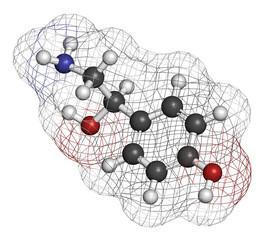Octopamine stimulant drug molecule (sympathomimetic agent).