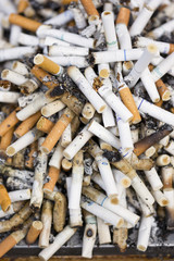 大量のタバコの吸殻