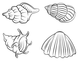 Shell Set Collection
