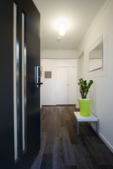 Contemporary home entrance front door and hallway