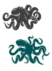 Octopus with waving tentacles