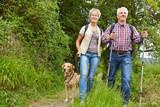 Paar Senioren mit Hund beim Wandern
