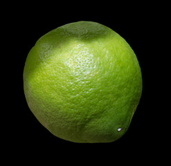 Green lime citrus fruit isolated on black.