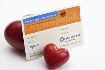 Organspendeausweis mit Zwei Herzen
