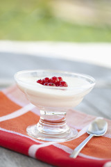 Close up Joghurt mit roten Johannisbeeren in einer Schüssel