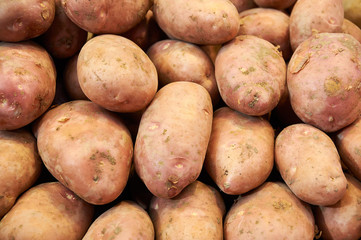 pink potatoes closeup on market