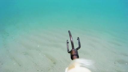 Hunting scenes underwater