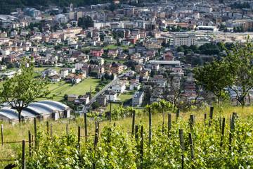 Morbegno - Valtellina