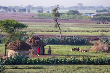 Maasaï dans leur village