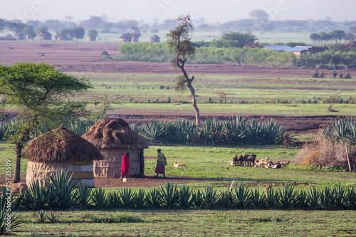 Staande foto Afrika Maasaï dans leur village