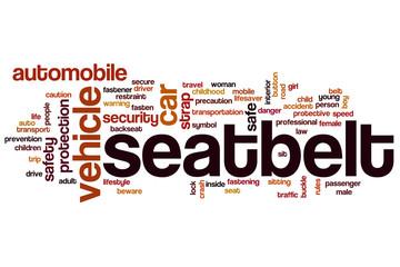 Seatbelt word cloud