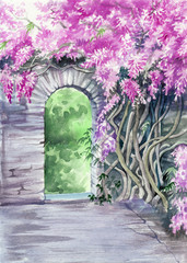 Blossoming wisteria garden over the wall with a gate