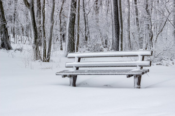 snow covered wooden sitting bench in park