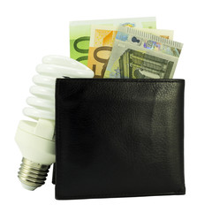 black wallet with euro money and light bulb