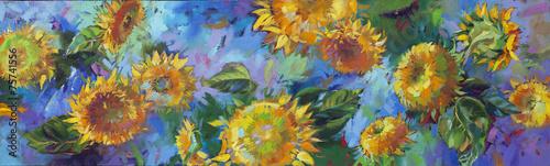 sunflower - 75741556