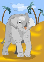 Cute baby elephant went for a walk in the desert