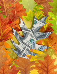 dollars and autumn leaves