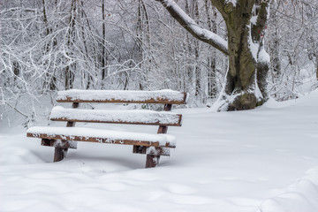snow covered wooden sitting bench in park 3