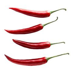 Single chili pepper set isolated on white