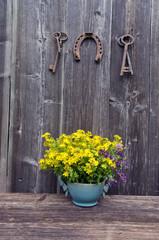 st Johns wort medical flowers and antique horseshoe with key