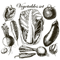 Handmade work - set vegetables. Vector.