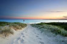 "Постер, картина, фотообои ""Sandy beach trail at dusk sundown Australia"""