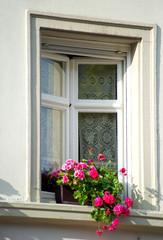 Fenster in der Altstadt von Konstanz