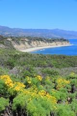California coast - Point Dume state park