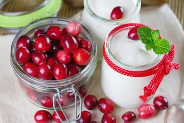 Fresh yogurt with cranberries. Small depth of field